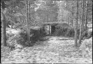 Pst. tykkiasema, jonka naamiointi on suoritettu erittäin taitavasti. Vitele,Ukonniemi, RTR 13. 1943.08.29 SA-kuva 136613