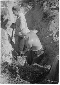 """Kaikki voimat on käytettävä tehokkaaseen puolustuksen ja niinpä ovat """"""""esikuntaherratkin"""""""" ottaneet lapion ja lähteneet linnoitustöihin. Rukajärven suunta 1944.07.24 SA-kuva 159475"""